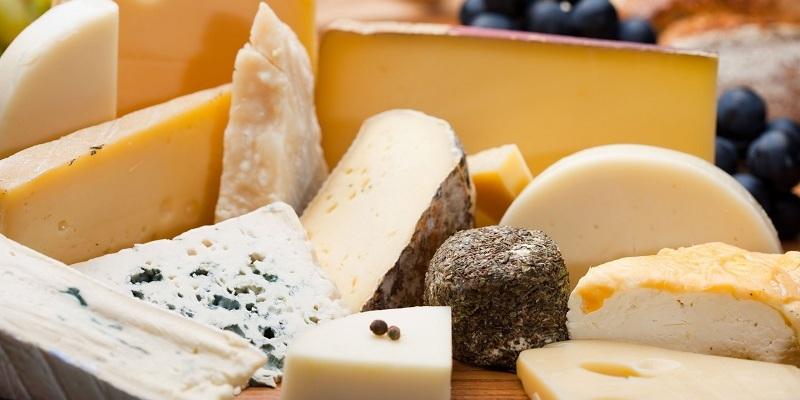 Сыр – настоящая белковая «сокровищница»